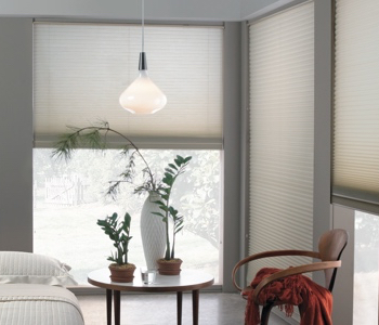 cellular shades in Philadelphia house