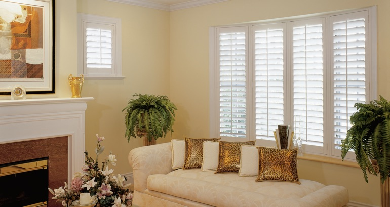 Philadelphia living room shutters